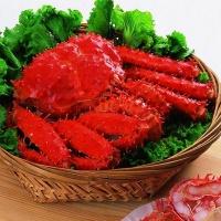 沪泽 海鲜组合 智利帝王蟹皇帝蟹海蟹500g*2只 冰加拿大牡丹虾甜虾海虾20/24 1kg/盒